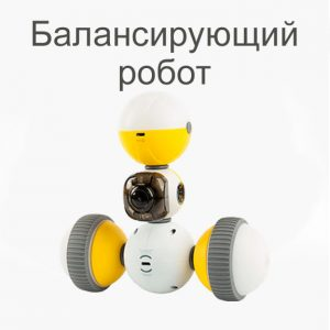 2. Балансирующий робот